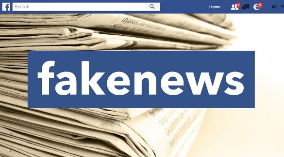 facebook combat false news